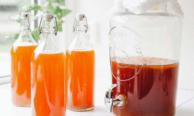 how-to-make-kombucha-photo