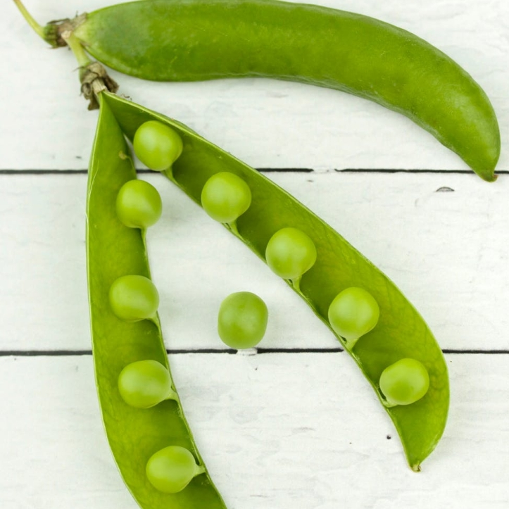 green peas plant on white surface